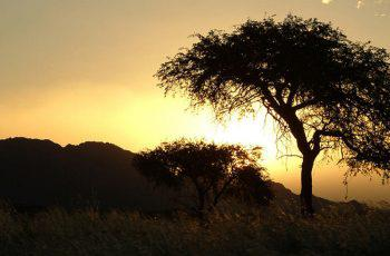 12 Day  – Namibia Summer Experience -Space with a View!