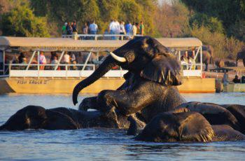 History of the Caprivi